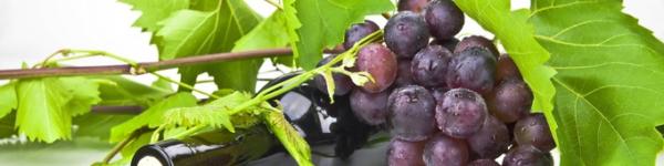 Punansed viinamarjad ja vein