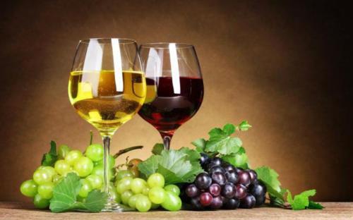 Vein ja viinamari