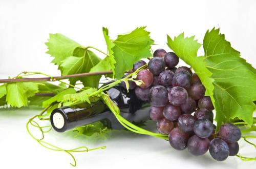 punaneviinamari ja vein